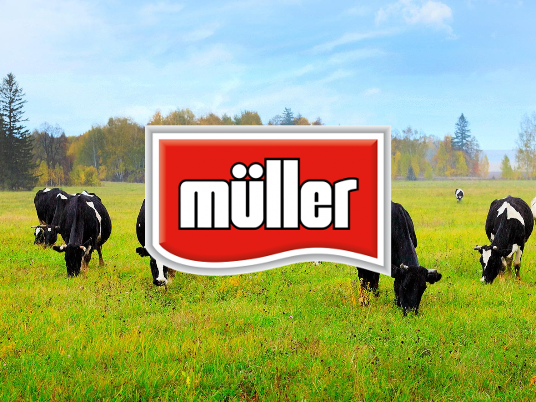 Muller_Case_Study.png